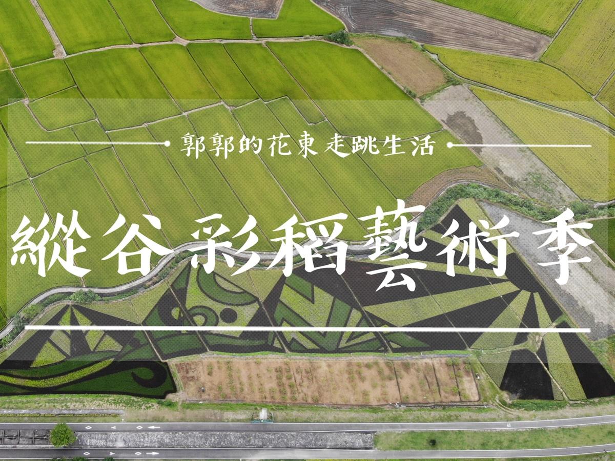 【花蓮遊記】2020縱谷彩稻藝術季┃4種色彩稻米所排列而成的上帝畫布,豐收園遊會一起來抱稻┃