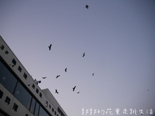 IMG_6819.jpg