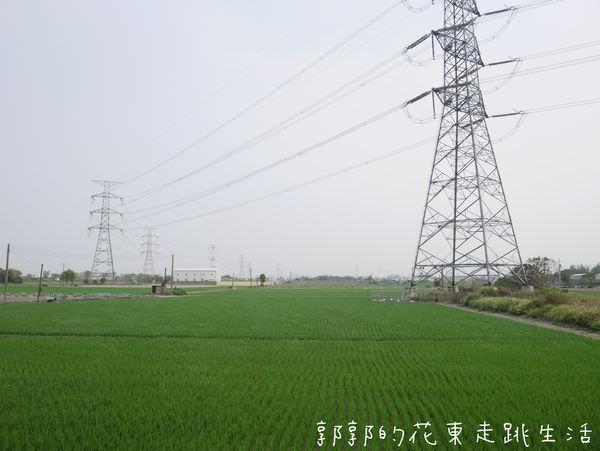 P1130156.jpg